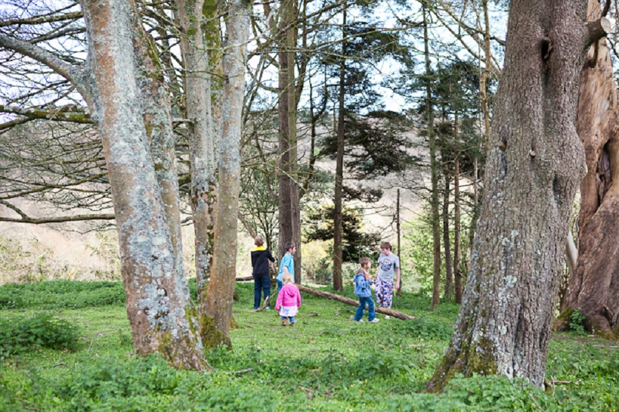 Spring scavenger hunts are a great activity for groups of children of all ages