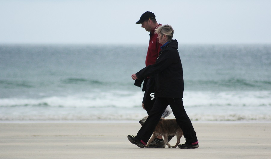 Cornwall has several dog friendly beaches for you and your dog to explore