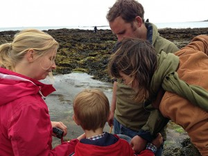family-looking-at-rockpool-creatures
