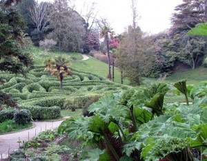 Image of Glendurgan Garden