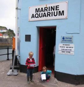 aquarium-290x300