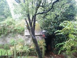 bird-feeder-blog-300x225