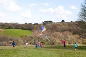 bosinver_kites2