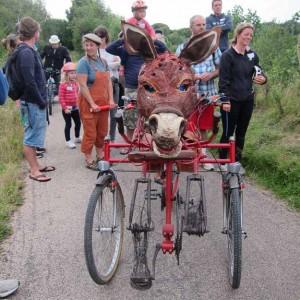 donkey-cycle