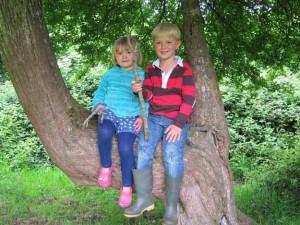 kids-in-tree