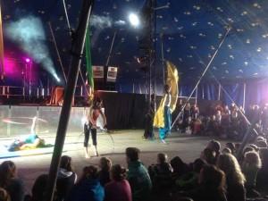 swamp-circus