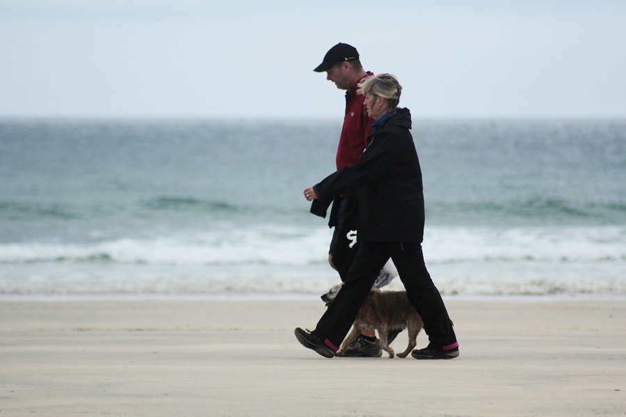 A trip to the beach is a must on any dog friendly holiday in Cornwall