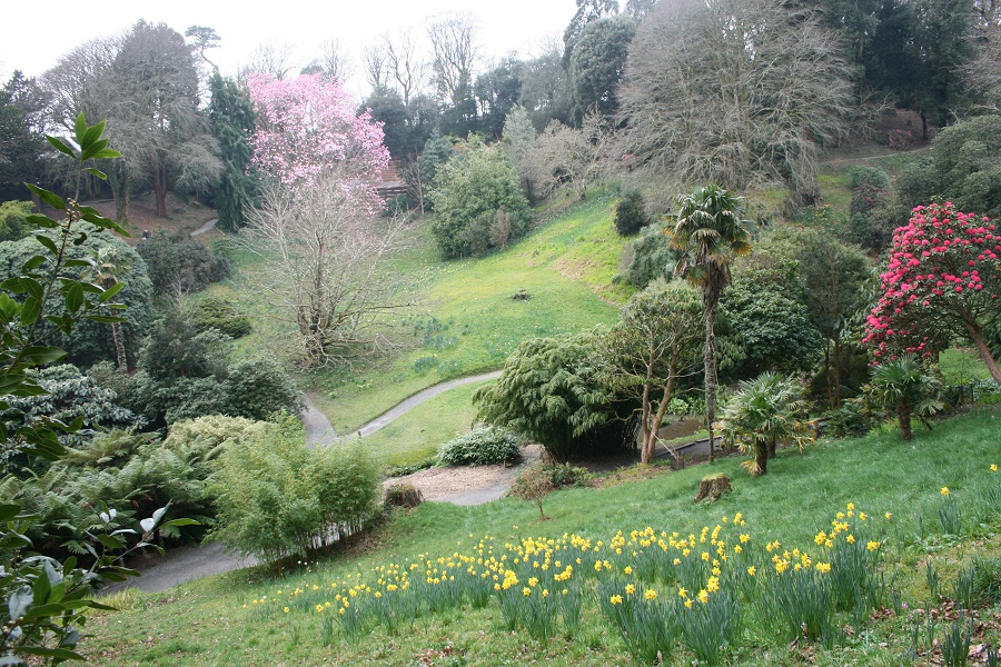 If you're looking for baby friendly days out in Cornwall, Trebah Garden is ideal