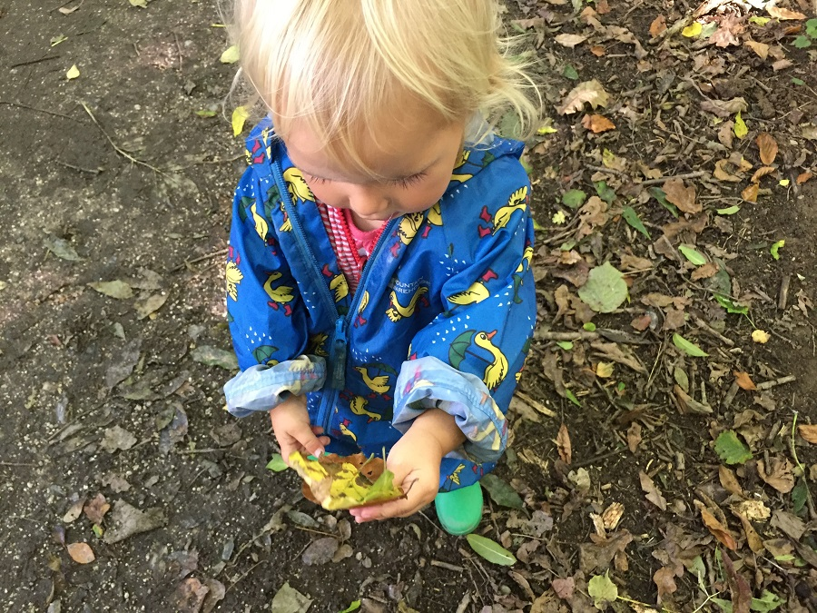 Autumn is a great time of year to explore Cornwall with toddlers