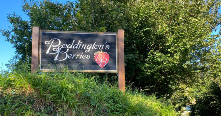 Sign at entrance of Boddington's Berries, Mevagissey, Cornwall