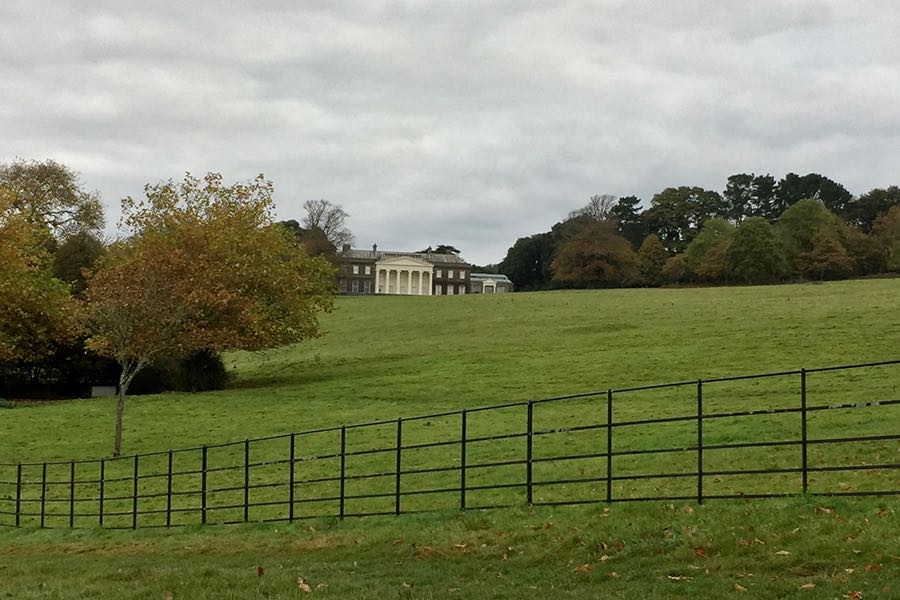 Trelissick House and Gardens