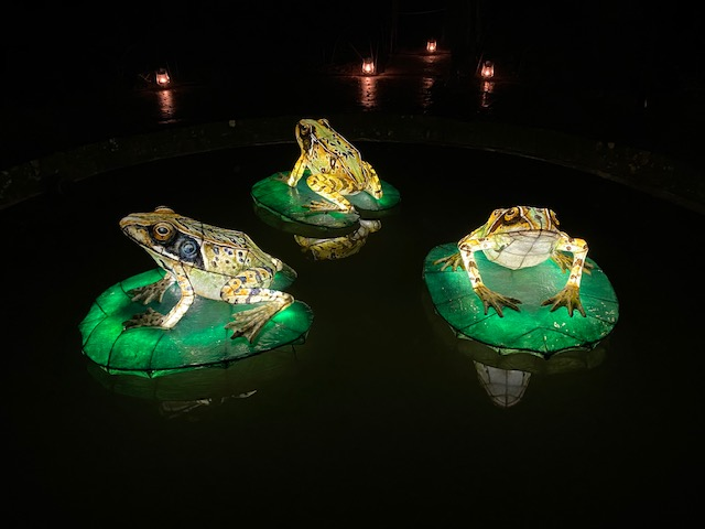 Frog lanterns at the Lost Gardens of Heligan