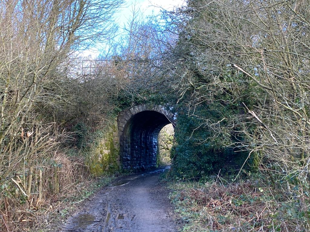 The Goss Moor Trail in Cornwall