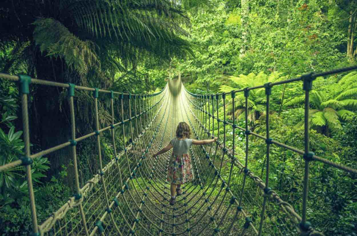 Child on a rope bridge at The Jungle at Helgian