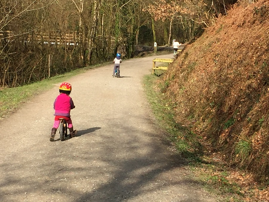 Children cycling along activity trails in Cardinham Woods